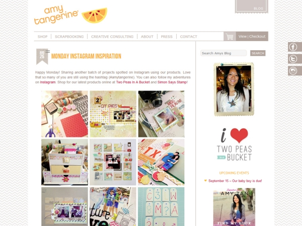 Custom WordPress Theme: Amy Tangerine
