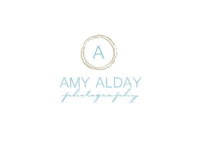 Custom Logo Design: Amy Alday