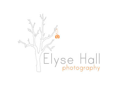 Custom Logo Design: Elyse Hall Photography